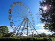 Stratford's Wheel 2017