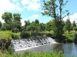 Walk in the Park at Charlecote